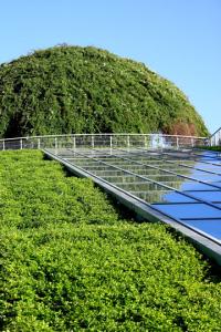 Prix d'une toiture végétalisée